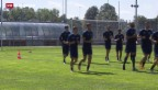 Video «FC Zürich entlässt Trainer Urs Meier» abspielen
