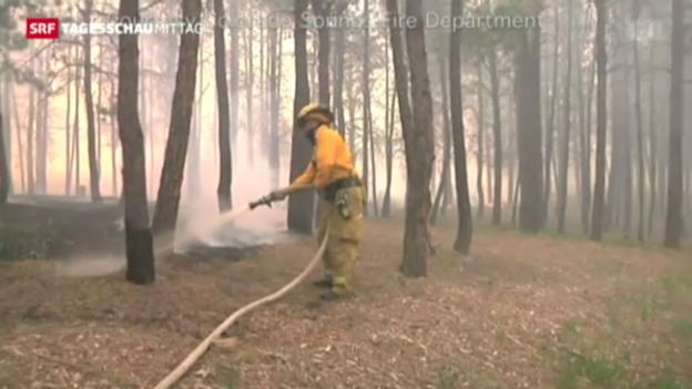 Video «Waldbrand in Colorado» abspielen