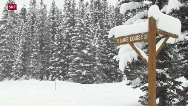 Video «Ski alpin: Speed-Auftakt in Lake Louise (Ka)» abspielen