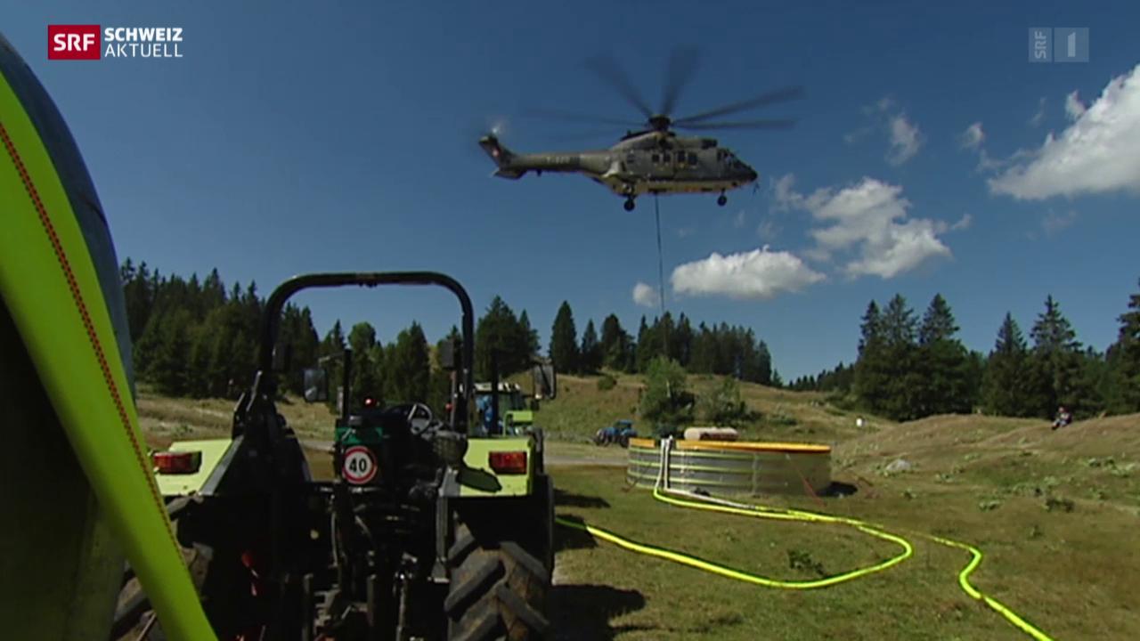 Armeehelikopter versorgen Kühe