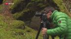 Video «Mystische Bergwelt» abspielen