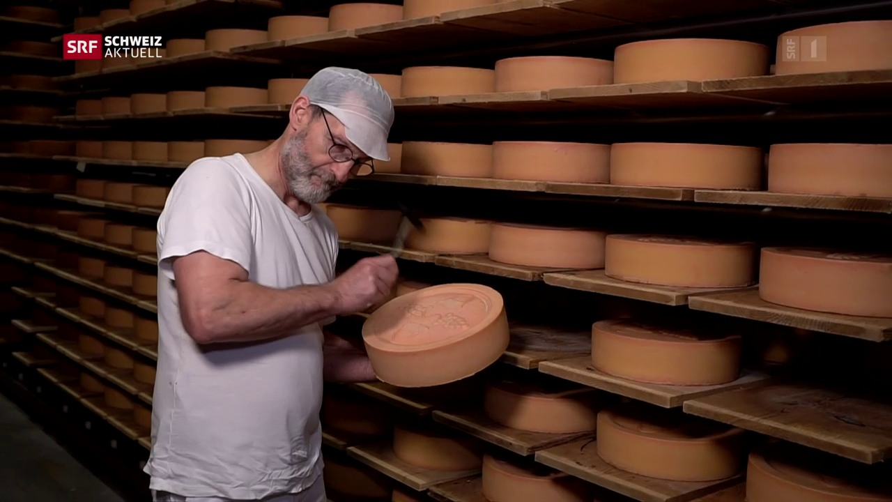 Erfolgreicher Freiburger Käser