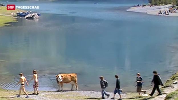 Video «Im Winter top – im Sommer flop» abspielen