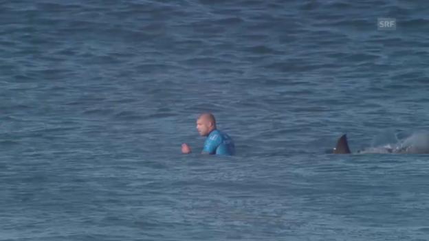 Video «Surfen: Mich Fannings wird von Hai attackiert» abspielen