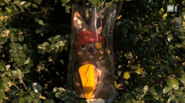 Video «2012: Vielen Osterhasen fehlt's an Kakao» abspielen