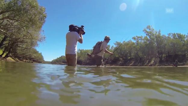 Video «Making-of «12'378 km Australien» (webexklusiv)» abspielen