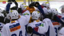 Video «Eishockey: NLA, ZSC Lions - Biel» abspielen