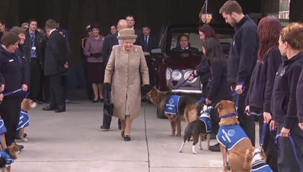 Video «Queen eröffnet ein Tierheim (unkom.)» abspielen
