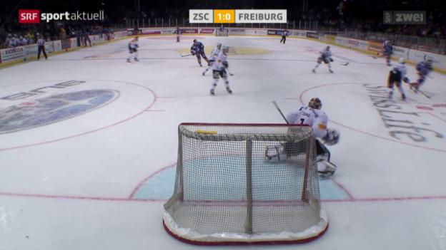 Video «Eishockey: NLA, ZSC Lions - Fribourg-Gottéron» abspielen
