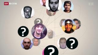 Video «FOKUS: Das Netzwerk der Brüsseler Terroristen» abspielen