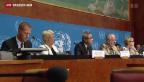 Video «Syrienkonflikt könnte Krieg im Nahen Osten entfachen» abspielen