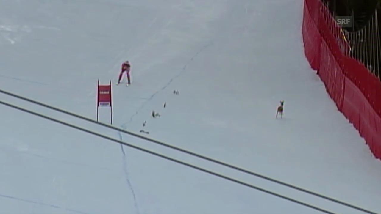 Ski Alpin: Weltcup Gröden, Ghedina und Reh 2004
