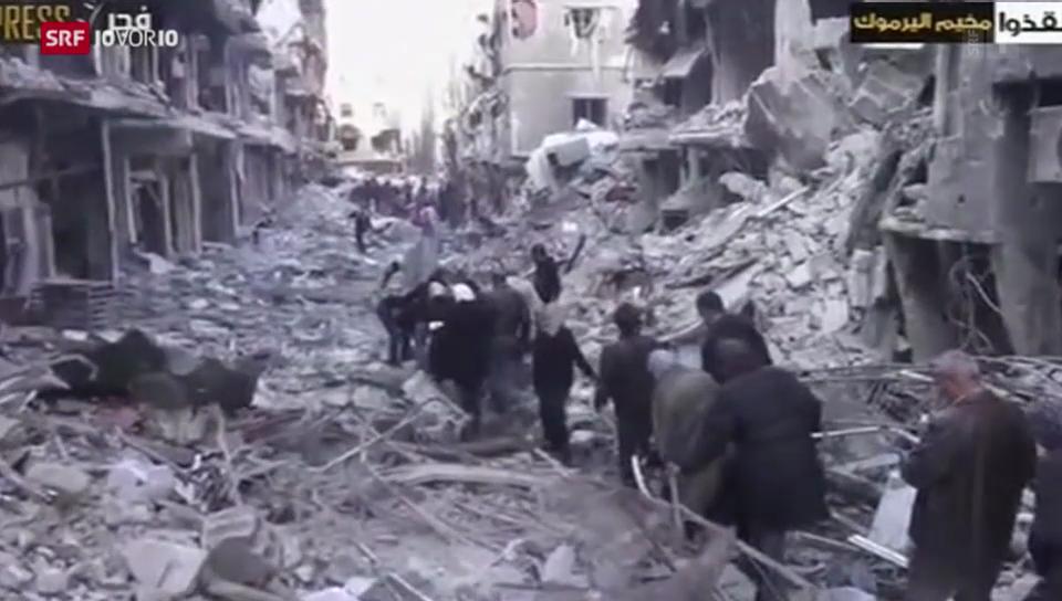 Kurt Pelda zur Lage in Syrien