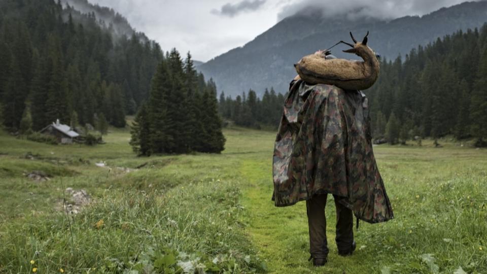 Jäger müssen sich bei Gämsen zurückhalten