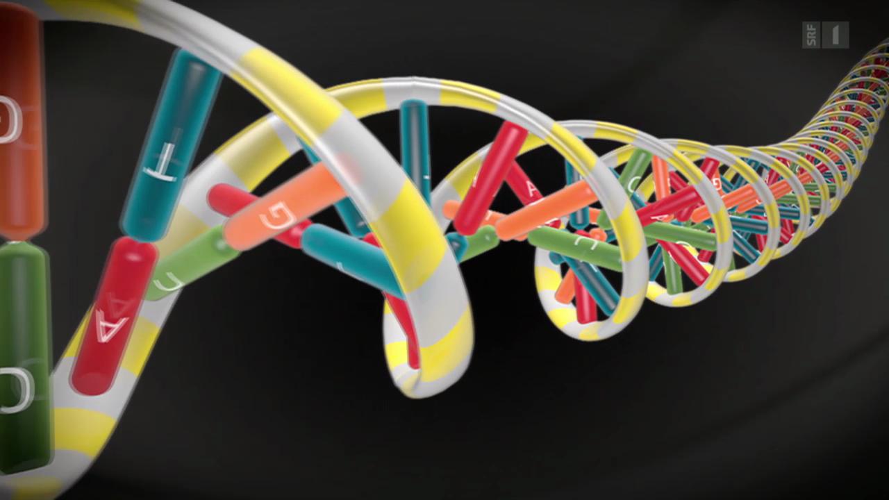 Personalisierte Medizin - Die Zukunft liegt in den Genen