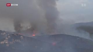 Video «FOKUS: Tote bei Bränden in Griechenland» abspielen