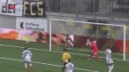 Video «FC Wil: Zwangsabstieg droht trotz Sanierungskonzept» abspielen