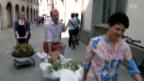 Video «Blumen Diener, St. Gallen» abspielen