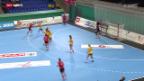 Video «Handball: EM-Quali 2014 Frauen, Schweiz - Schweden» abspielen