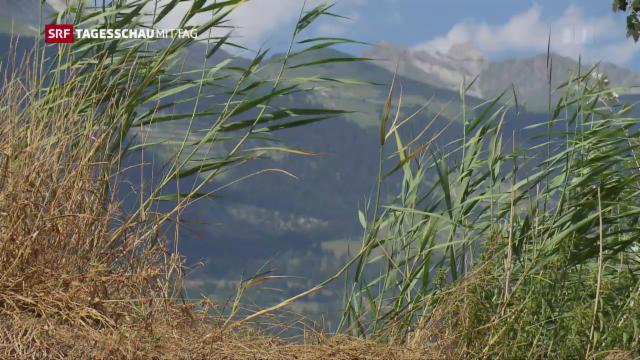 Sonniges Wetter Kein Ende Der Trockenheit In Sicht News Srf