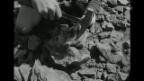 Video ««Eisenbergwerk schliesst» aus: Antenne, 17.8.1967» abspielen