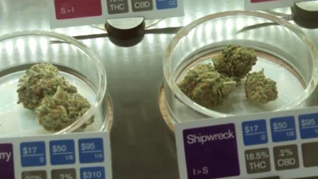 Video «Cannabis als Medizin» abspielen