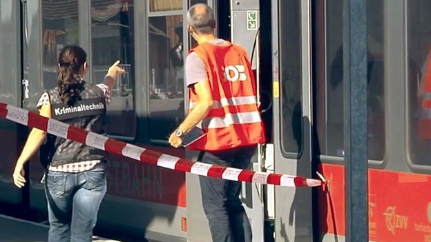 Salez: Die Attacke im Zug