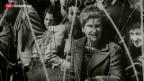Video «Französischer Historiker fordert Korrektur zugunsten der Schweiz» abspielen