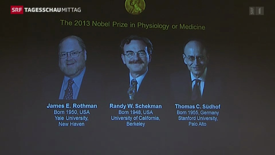 Medizin-Nobelpreisträger bekanntgegeben