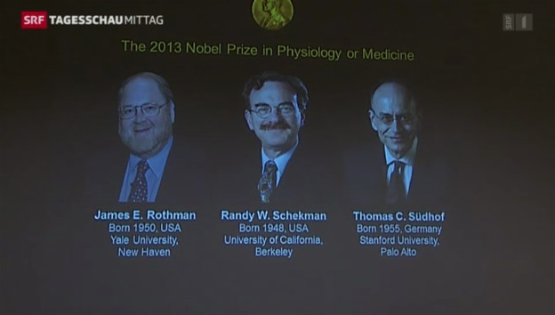 Video «Medizin-Nobelpreisträger bekanntgegeben» abspielen