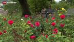 Video «Liste aller historischen Gärten und Anlagen der Schweiz» abspielen