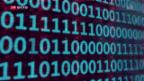 Video «FOKUS: Kryptowährungen im Aufwind» abspielen