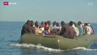 Video «Warum Eritreer in die Schweiz wollen» abspielen