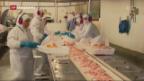 Video «Gammelfleisch auch auf unseren Tellern?» abspielen