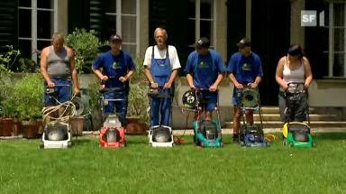 Rasenmäher-Test: Diese Geräte schneiden gut ab