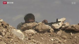 Video «Syrien: Umkämpfte Grenzstadt» abspielen