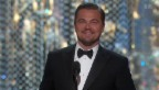 Video «Superstar: Oscar-Gewinner Leonardo DiCaprio» abspielen