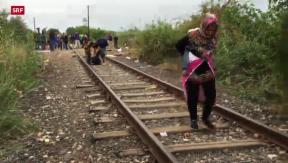 Video «Immer mehr Flüchtlinge in Ungarn» abspielen