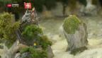 Video «Miniaturwelt soll Touristen zum Rheinfall locken» abspielen