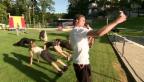 Video «Prominenz am «Toasted Challenge»» abspielen