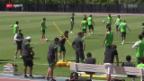 Video «WM 2014. Vorschau auf den Achtelfinal Niederlande - Mexiko» abspielen