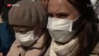 Video «FOKUS: Müll-Berge rund um Moskau» abspielen