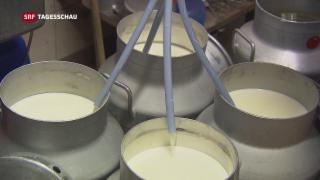Video «Milch-Streit» abspielen