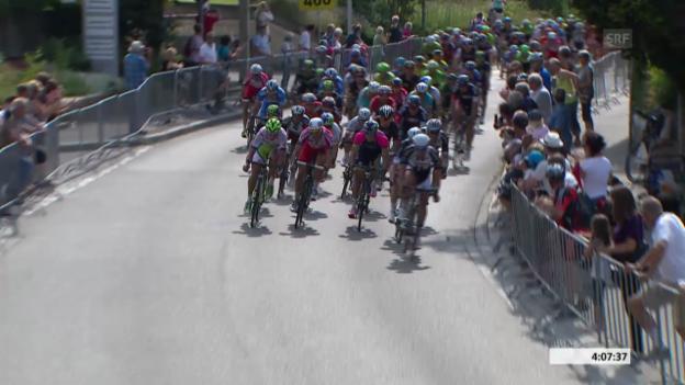 Video «Rad: Tour de Suisse, Schlussphase 5. Etappe» abspielen
