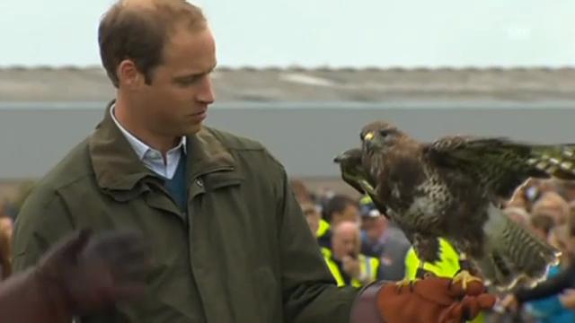 Prinz William an Landwirtschaftsschau