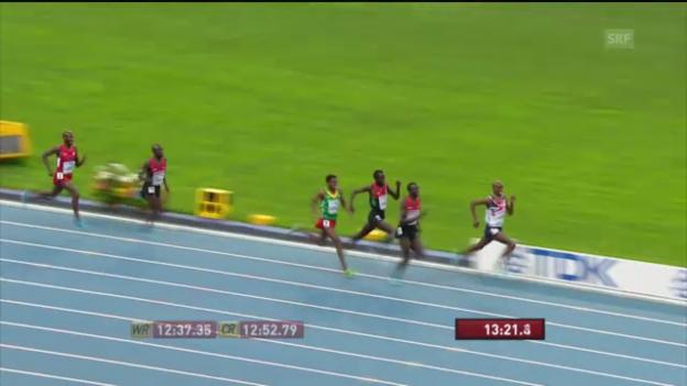 Video «LA-WM: 5000 m Männer» abspielen