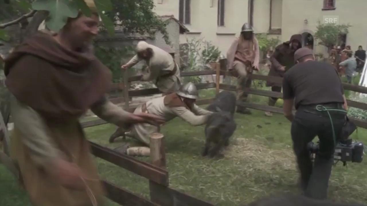 Schweine fangen ist nicht einfach