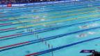 Video «Bronze im Schwimmen» abspielen