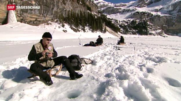 Video «Eisfischen in den Schweizer Bergen» abspielen