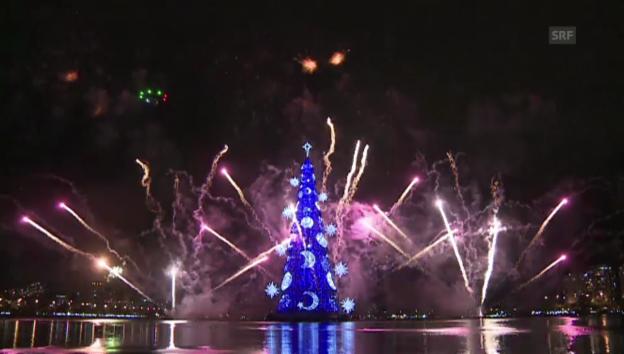 Video «Rekord-Weihnachtsbaum in Rio de Janeiro» abspielen